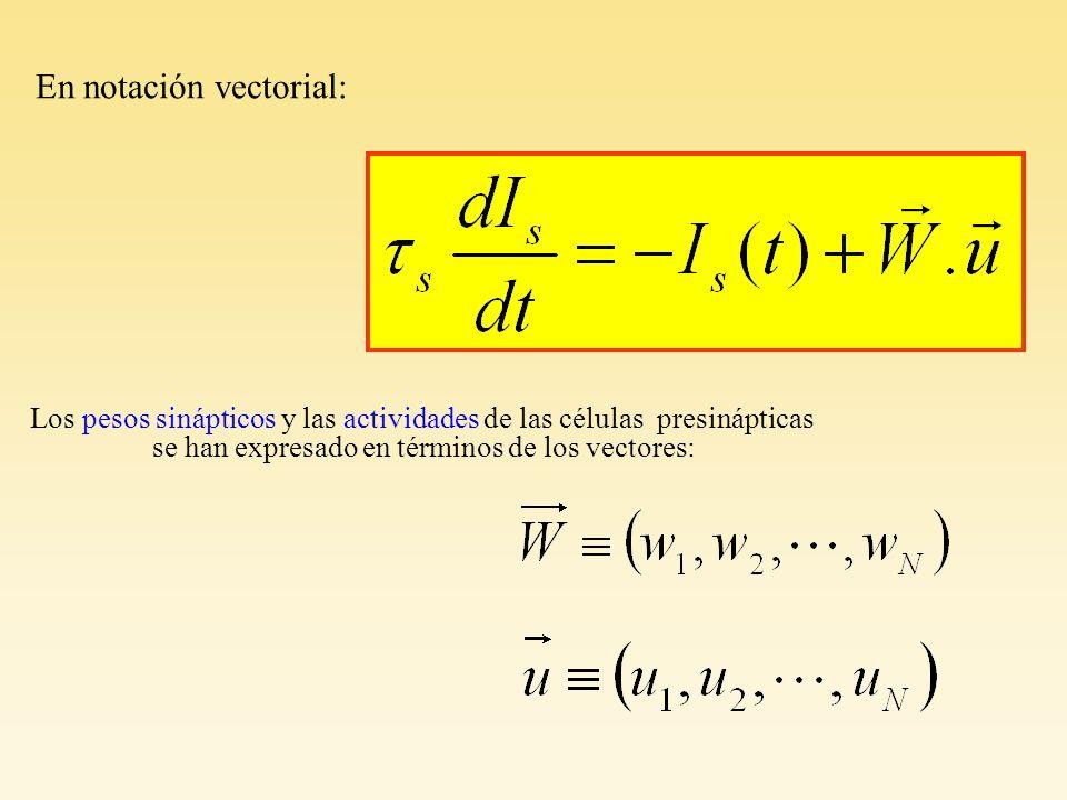 En notación vectorial: Los pesos sinápticos y las actividades de las células presinápticas se han expresado en términos de los vectores: