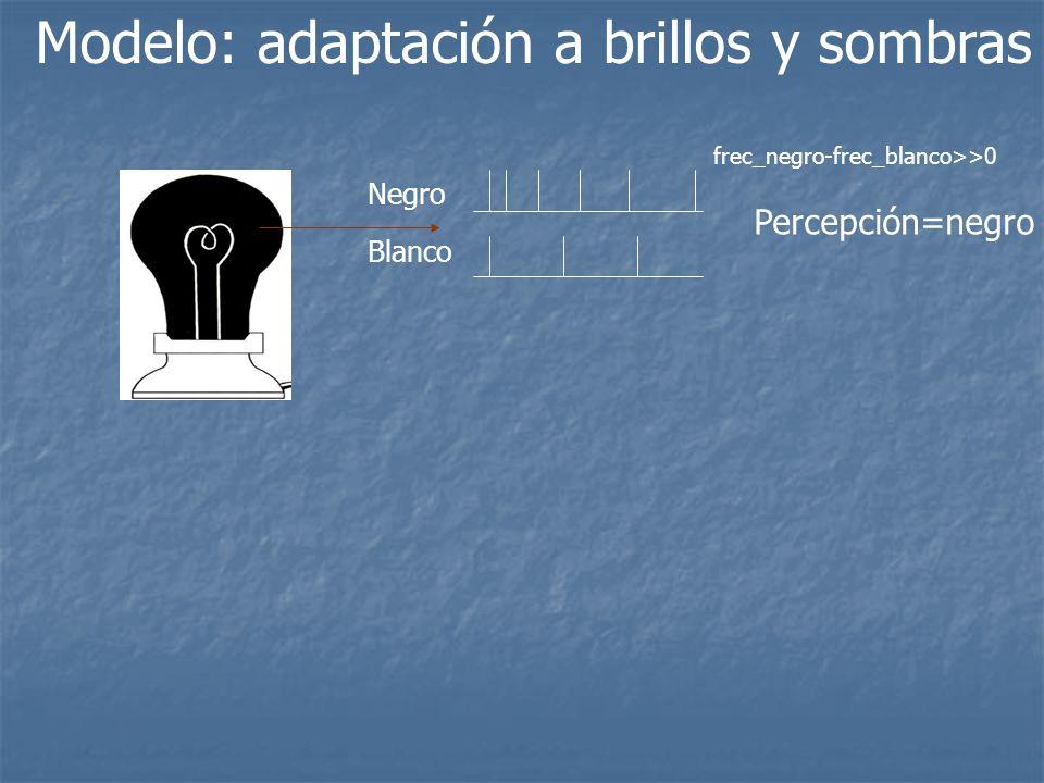 Modelo: adaptación a brillos y sombras Negro Blanco Percepción=negro frec_negro-frec_blanco>>0