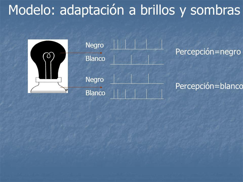 Modelo: adaptación a brillos y sombras Negro Blanco Percepción=negro Negro Blanco Percepción=blanco