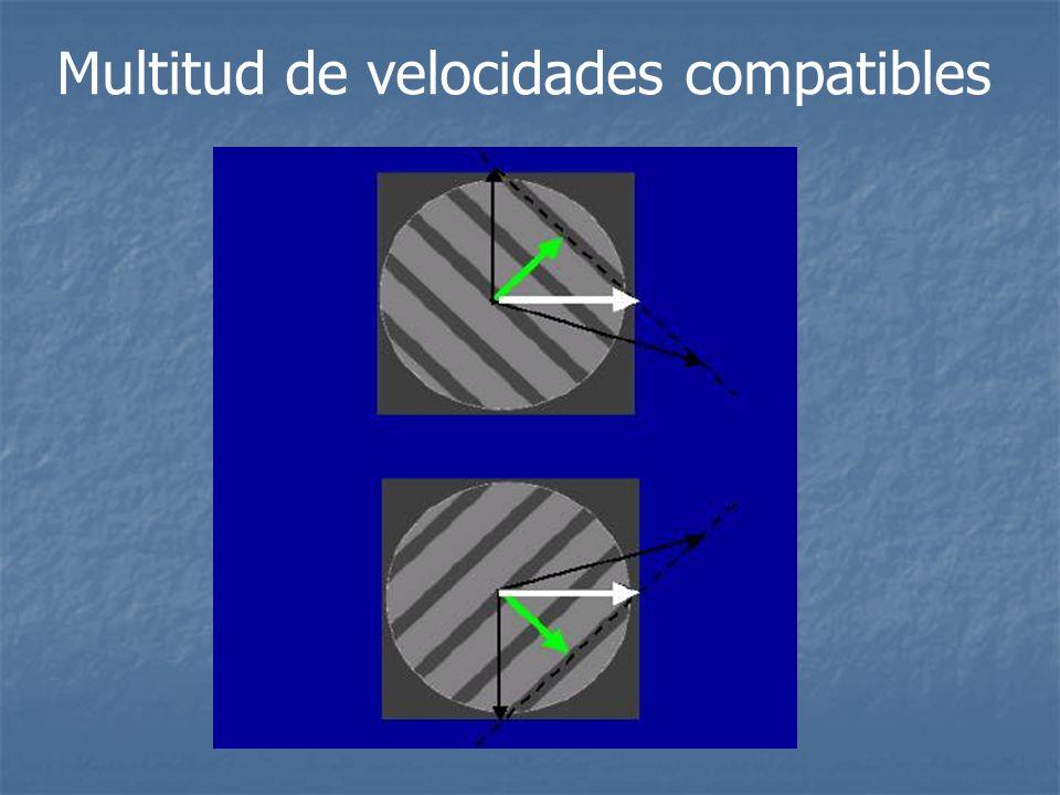 Multitud de velocidades compatibles