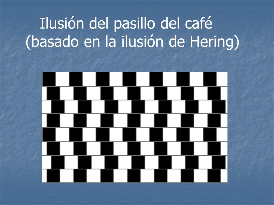 Ilusión del pasillo del café (basado en la ilusión de Hering)