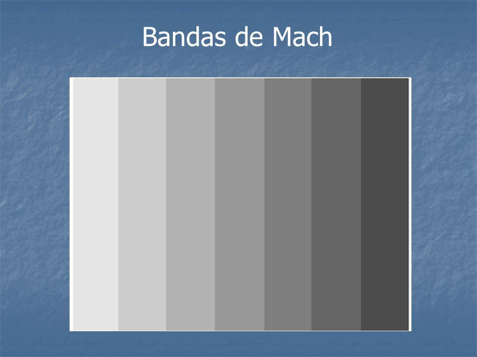 Bandas de Mach