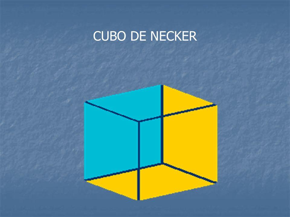 CUBO DE NECKER