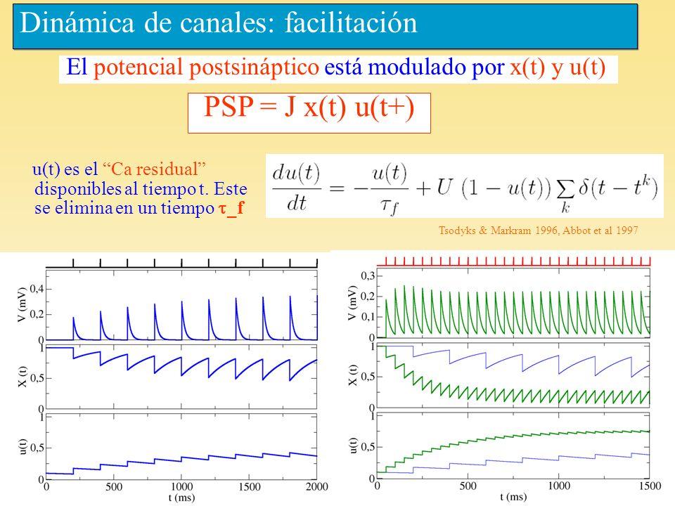Dinámica de canales: facilitación Tsodyks & Markram 1996, Abbot et al 1997 PSP = J x(t) u(t+) El potencial postsináptico está modulado por x(t) y u(t)