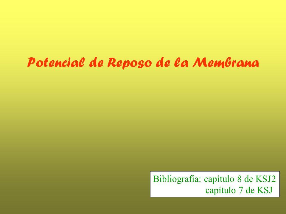 Potencial de Reposo de la Membrana Bibliografía: capítulo 8 de KSJ2 capítulo 7 de KSJ