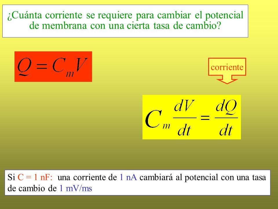 ¿Cuánta corriente se requiere para cambiar el potencial de membrana con una cierta tasa de cambio? Si C = 1 nF: una corriente de 1 nA cambiará al pote