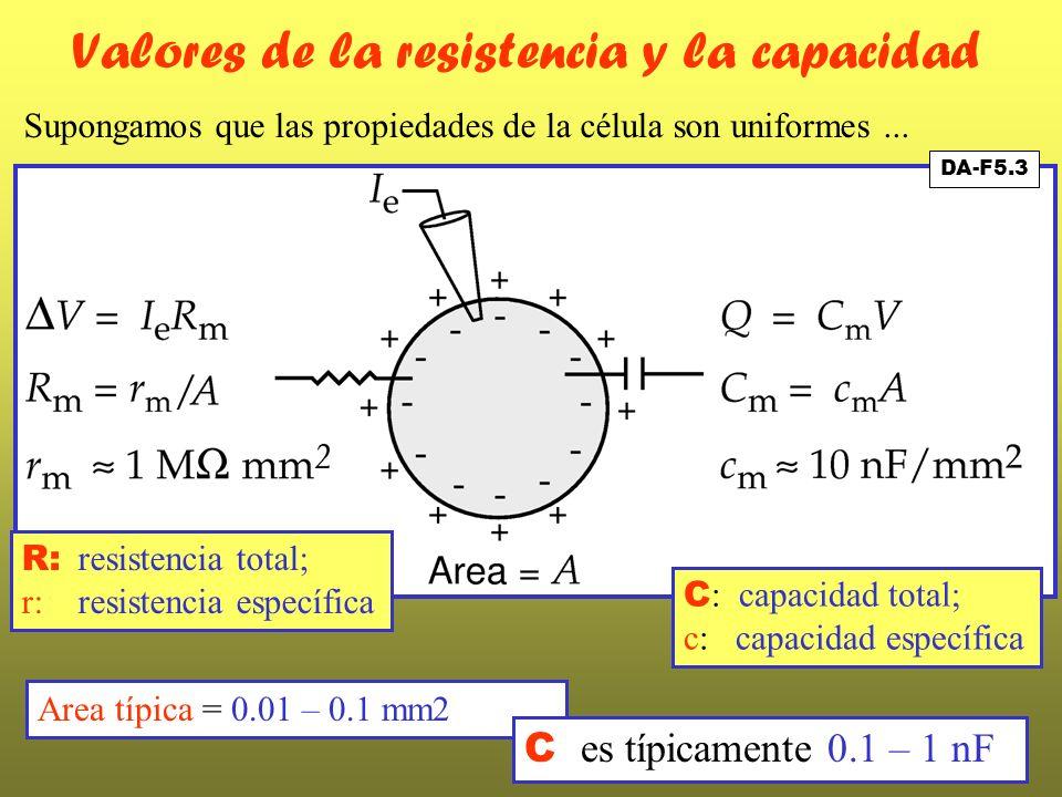 DA-F5.3 Valores de la resistencia y la capacidad Supongamos que las propiedades de la célula son uniformes... C : capacidad total; c: capacidad especí