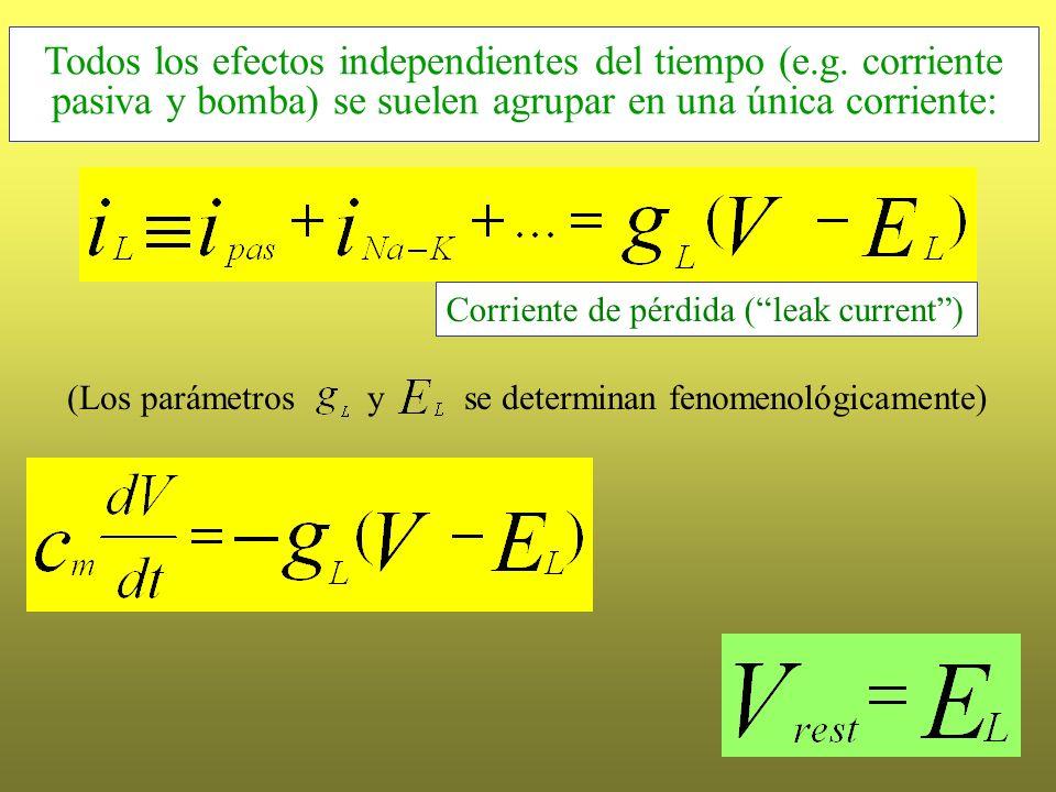 (Los parámetros y se determinan fenomenológicamente) Corriente de pérdida (leak current) La corriente de pérdida-leak Todos los efectos independientes
