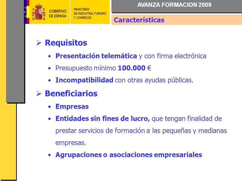 AVANZA FORMACION 2009 Requisitos Presentación telemática y con firma electrónica Presupuesto mínimo 100.000 Incompatibilidad con otras ayudas públicas.