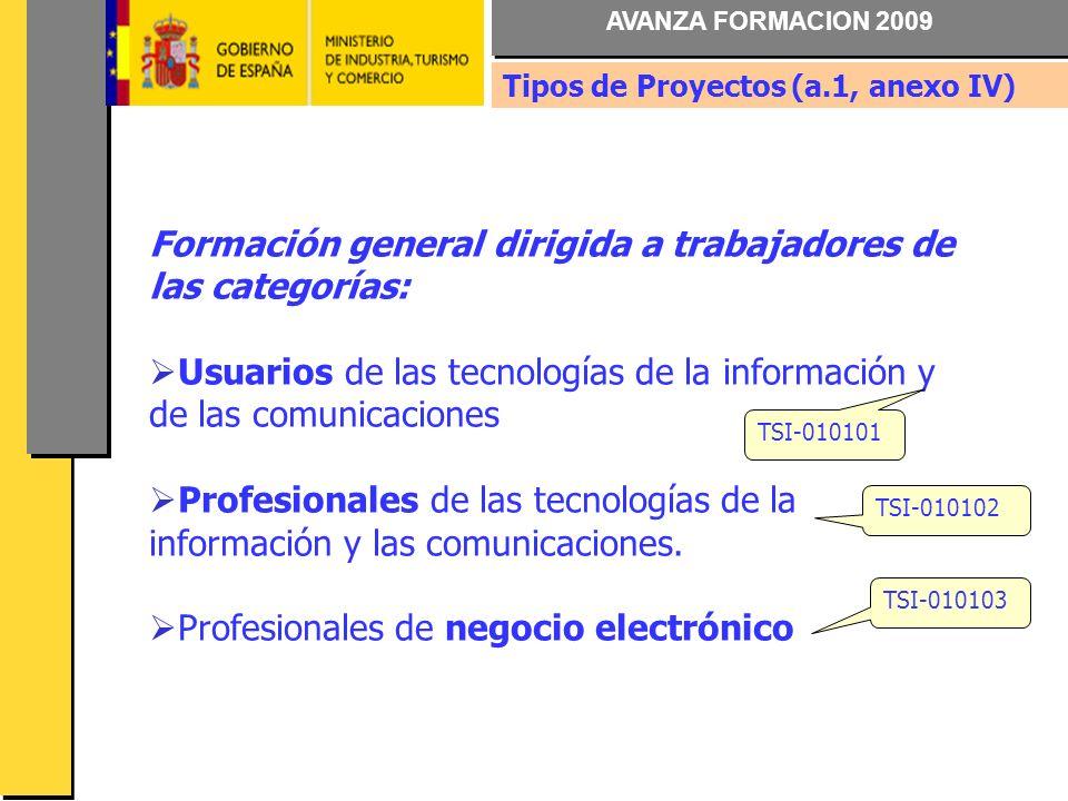 AVANZA FORMACION 2009 Formación general dirigida a trabajadores de las categorías: Usuarios de las tecnologías de la información y de las comunicaciones Profesionales de las tecnologías de la información y las comunicaciones.