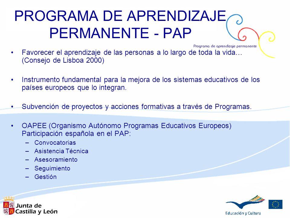 PROGRAMA DE APRENDIZAJE PERMANENTE - PAP Favorecer el aprendizaje de las personas a lo largo de toda la vida… (Consejo de Lisboa 2000) Instrumento fun