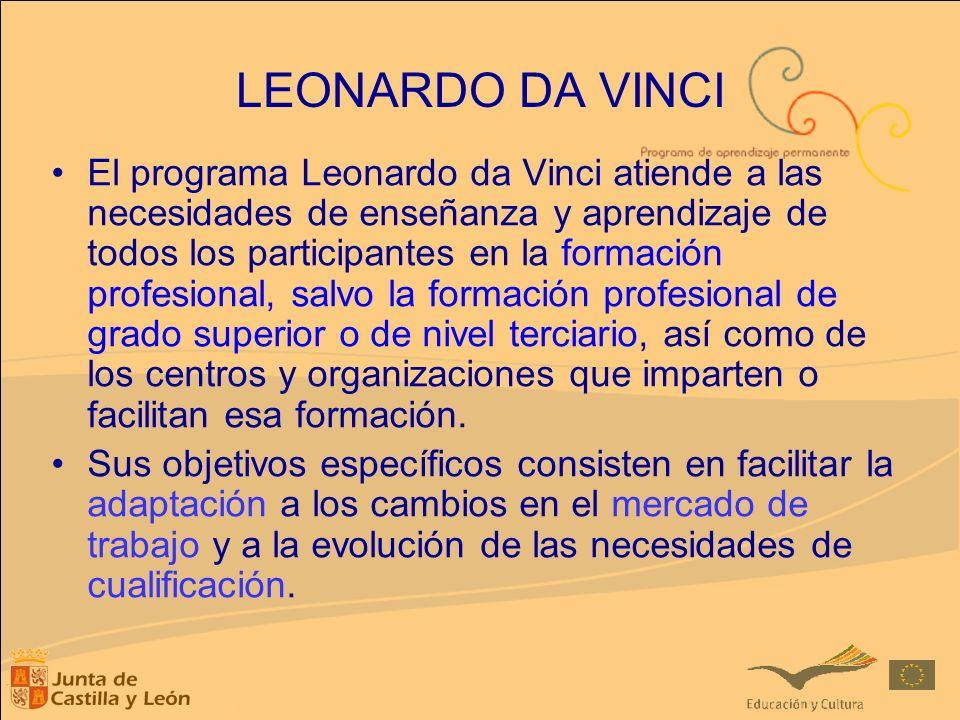 El programa Leonardo da Vinci atiende a las necesidades de enseñanza y aprendizaje de todos los participantes en la formación profesional, salvo la fo