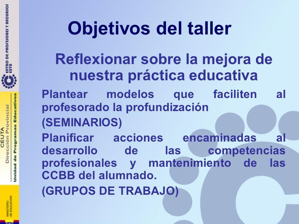 Objetivos del taller Reflexionar sobre la mejora de nuestra práctica educativa Plantear modelos que faciliten al profesorado la profundización (SEMINA