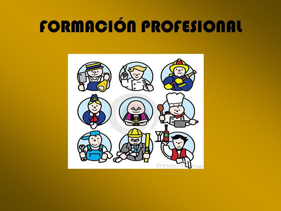 La Formación Profesional Específica y las Enseñanzas de Artes Plásticas y Diseño comprenden un conjunto de Ciclos Formativos con una organización modular, constituidos por áreas de conocimiento teórico-práctico en función de los diversos campos profesionales.