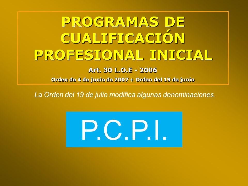 PROGRAMAS DE CUALIFICACIÓN PROFESIONAL INICIAL Art. 30 L.O.E - 2006 Orden de 4 de junio de 2007 + Orden del 19 de junio La Orden del 19 de julio modif