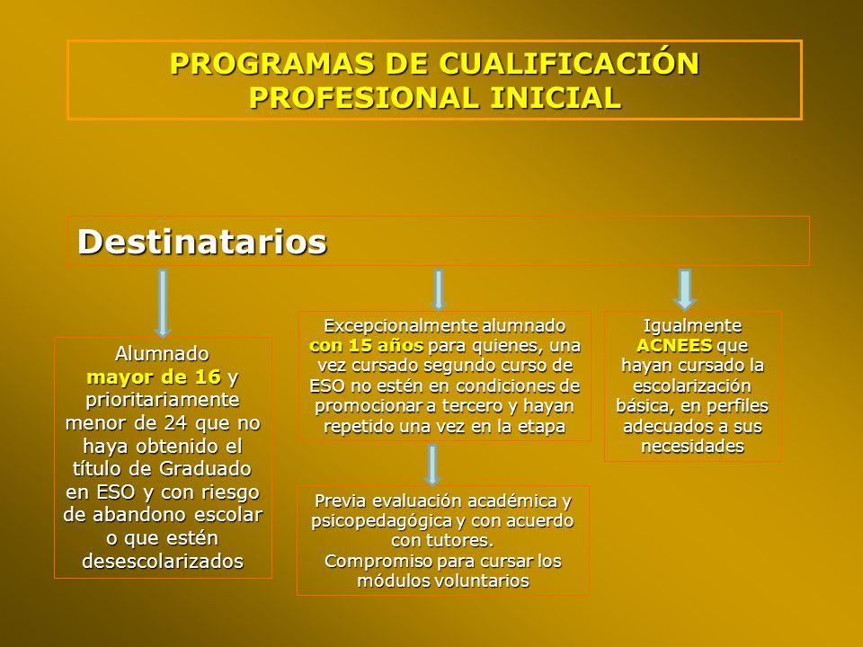 PROGRAMAS DE CUALIFICACIÓN PROFESIONAL INICIAL Destinatarios Alumnado mayor de 16 y prioritariamente menor de 24 que no haya obtenido el título de Gra
