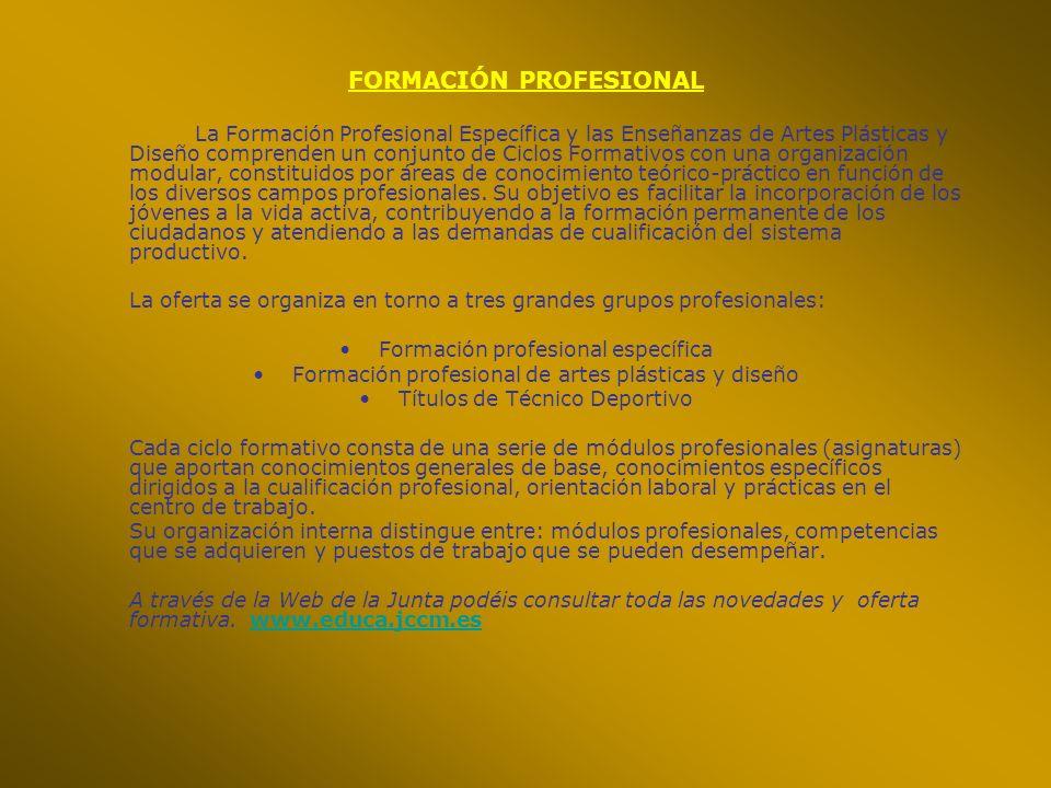 La Formación Profesional Específica y las Enseñanzas de Artes Plásticas y Diseño comprenden un conjunto de Ciclos Formativos con una organización modu