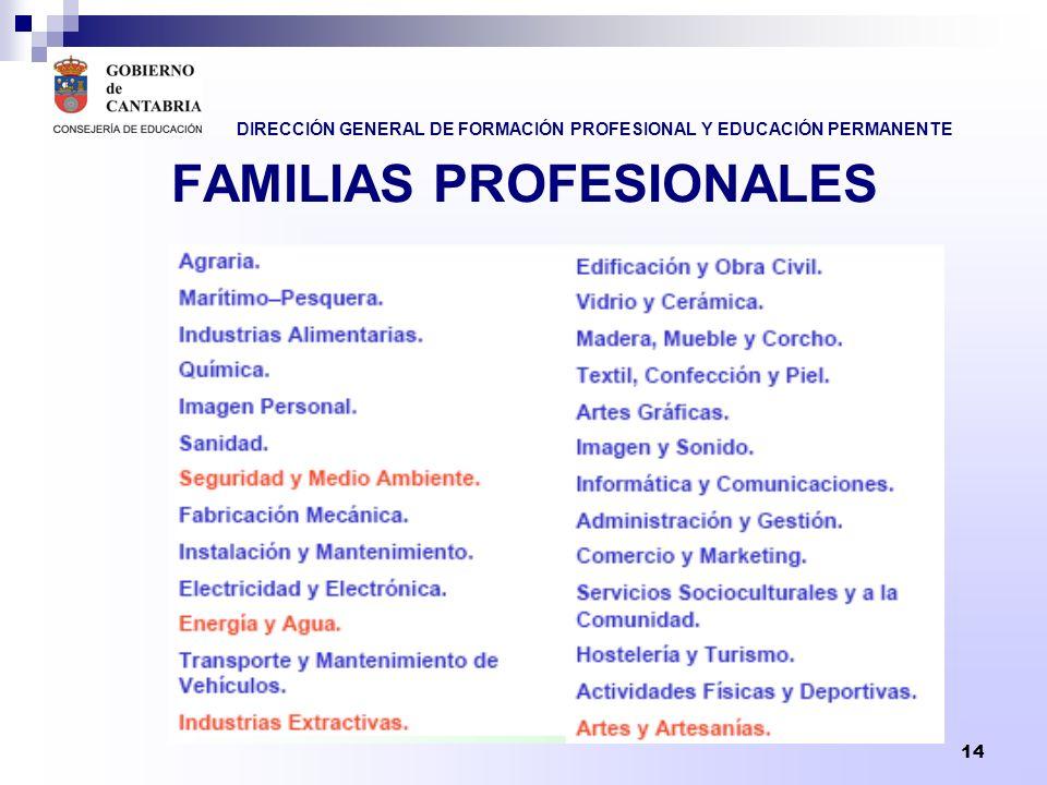 DIRECCIÓN GENERAL DE FORMACIÓN PROFESIONAL Y EDUCACIÓN PERMANENTE 14 FAMILIAS PROFESIONALES