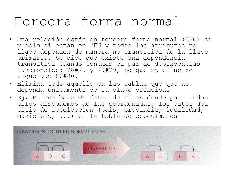 Tercera forma normal Una relación están en tercera forma normal (3FN) si y sólo si están en 2FN y todos los atributos no llave dependen de manera no t