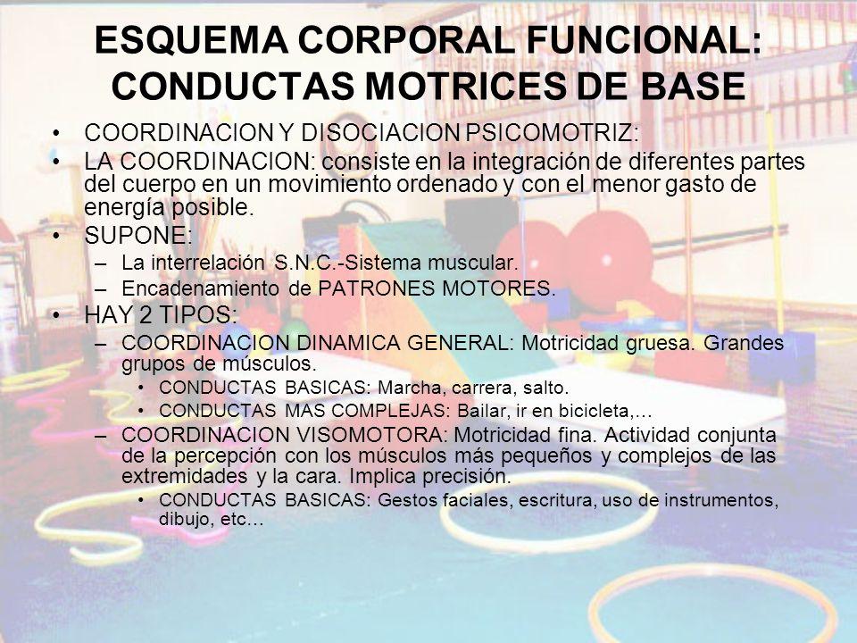 ESQUEMA CORPORAL FUNCIONAL: CONDUCTAS MOTRICES DE BASE COORDINACION Y DISOCIACION PSICOMOTRIZ: LA COORDINACION: consiste en la integración de diferent