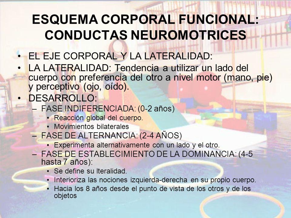 ESQUEMA CORPORAL FUNCIONAL: CONDUCTAS NEUROMOTRICES EL EJE CORPORAL Y LA LATERALIDAD: LA LATERALIDAD: Tendencia a utilizar un lado del cuerpo con pref