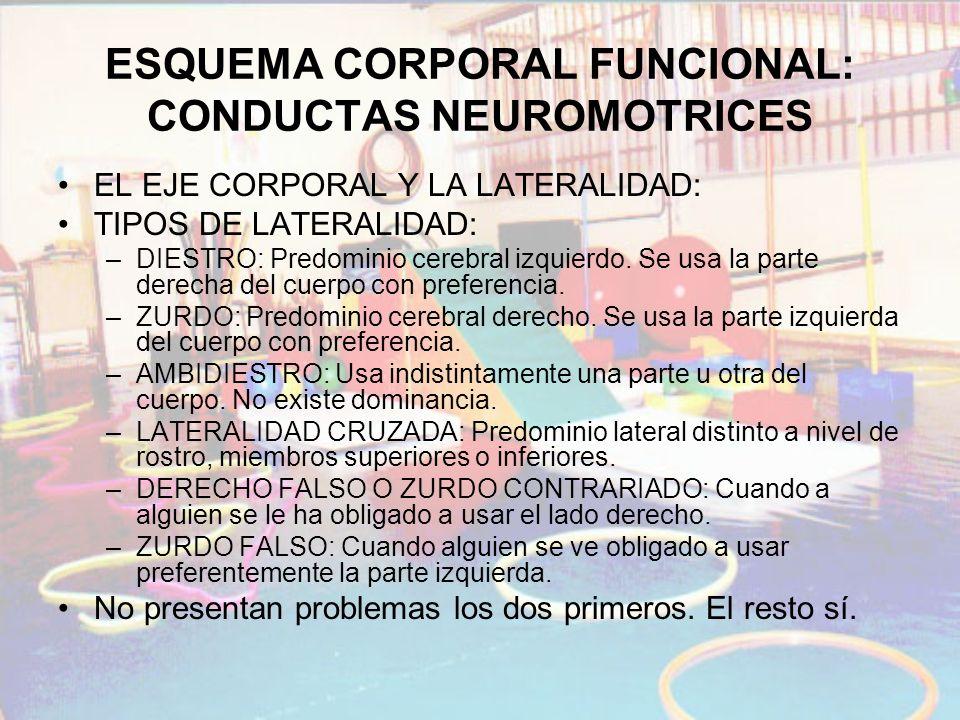 ESQUEMA CORPORAL FUNCIONAL: CONDUCTAS NEUROMOTRICES EL EJE CORPORAL Y LA LATERALIDAD: TIPOS DE LATERALIDAD: –DIESTRO: Predominio cerebral izquierdo. S