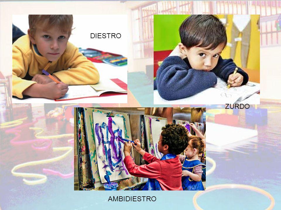 DIESTRO ZURDO AMBIDIESTRO