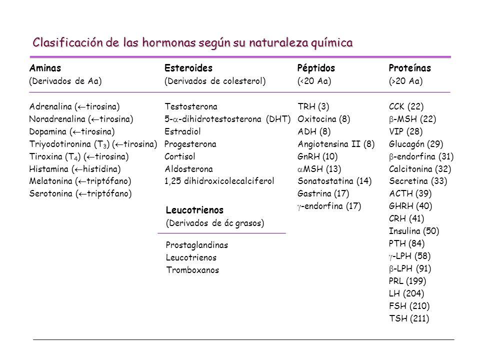 Clasificación de las hormonas según su naturaleza química Aminas (Derivados de Aa) Adrenalina ( tirosina) Noradrenalina ( tirosina) Dopamina ( tirosin