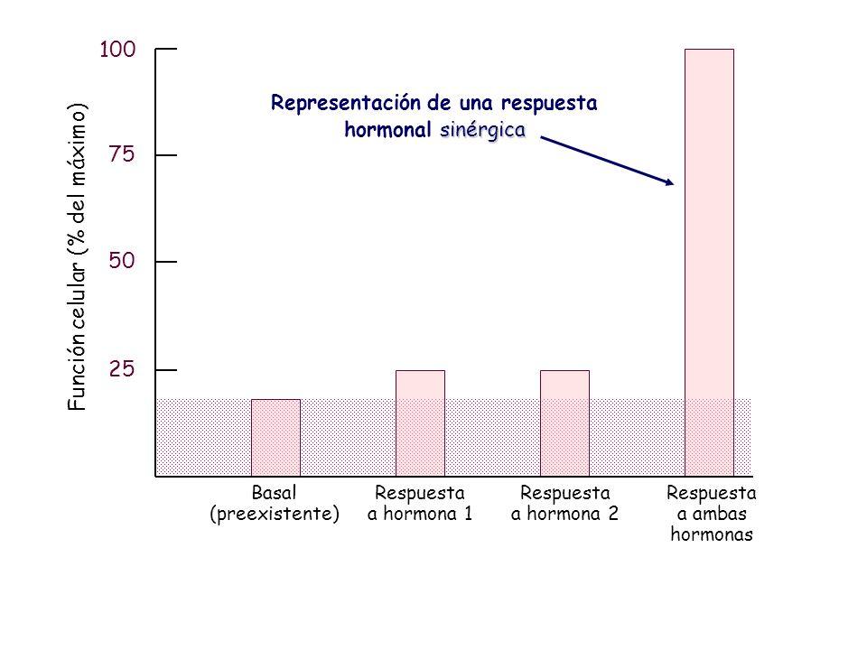 25 50 75 100 Basal (preexistente) Respuesta a hormona 1 Respuesta a hormona 2 Respuesta a ambas hormonas Función celular (% del máximo) Representación