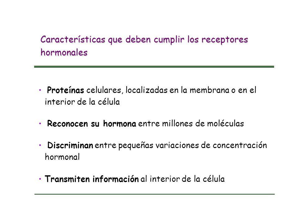 Características que deben cumplir los receptores hormonales Proteínas celulares, localizadas en la membrana o en el interior de la célula Transmiten i