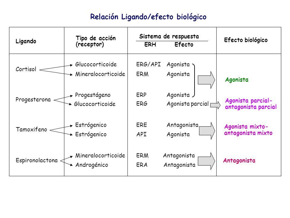 Ligando Tipo de acción (receptor) Sistema de respuesta ERH Efecto Efecto biológico Agonista Agonista parcial- antagonista parcial Cortisol Glucocortic