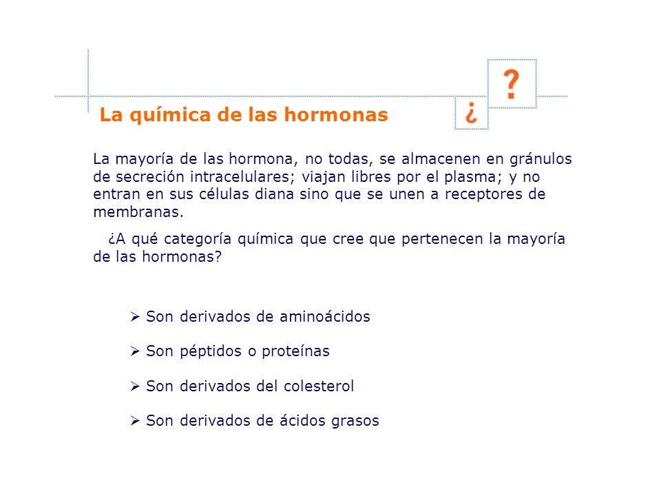 La química de las hormonas La mayoría de las hormona, no todas, se almacenen en gránulos de secreción intracelulares; viajan libres por el plasma; y n