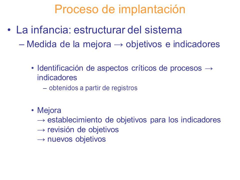 Diapositiva 100 Proceso de implantación La infancia: estructurar del sistema –Medida de la mejora objetivos e indicadores Identificación de aspectos c