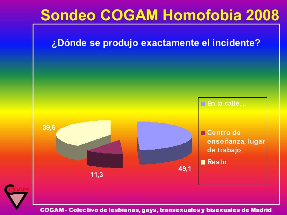 Sondeo COGAM Homofobia 2008 COGAM - Colectivo de lesbianas, gays, transexuales y bisexuales de Madrid ¿Dónde se produjo exactamente el incidente?