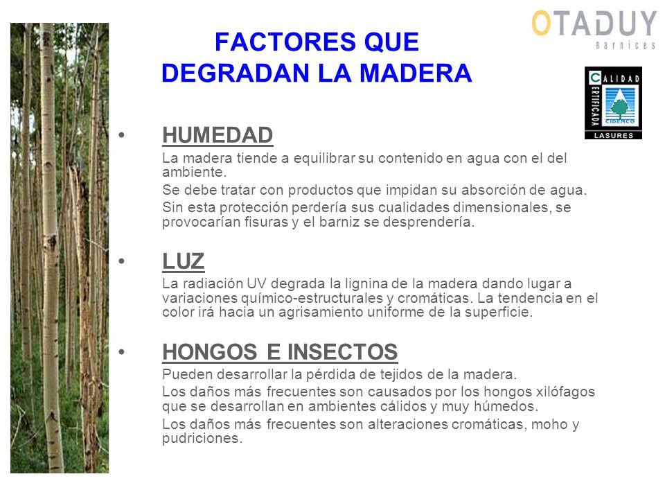 FACTORES QUE DEGRADAN LA MADERA HUMEDAD La madera tiende a equilibrar su contenido en agua con el del ambiente. Se debe tratar con productos que impid
