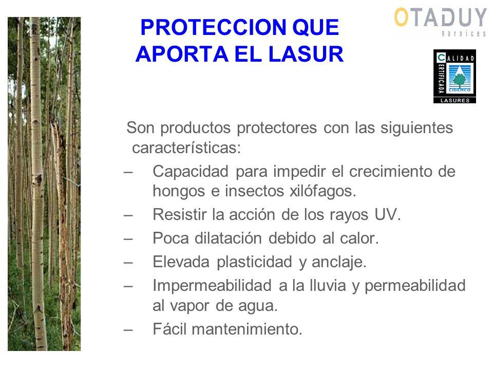 PROTECCION QUE APORTA EL LASUR Son productos protectores con las siguientes características: –Capacidad para impedir el crecimiento de hongos e insect
