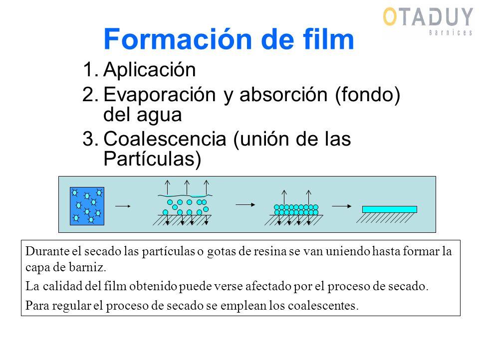 Formación de film 1.Aplicación 2.Evaporación y absorción (fondo) del agua 3.Coalescencia (unión de las Partículas) Durante el secado las partículas o