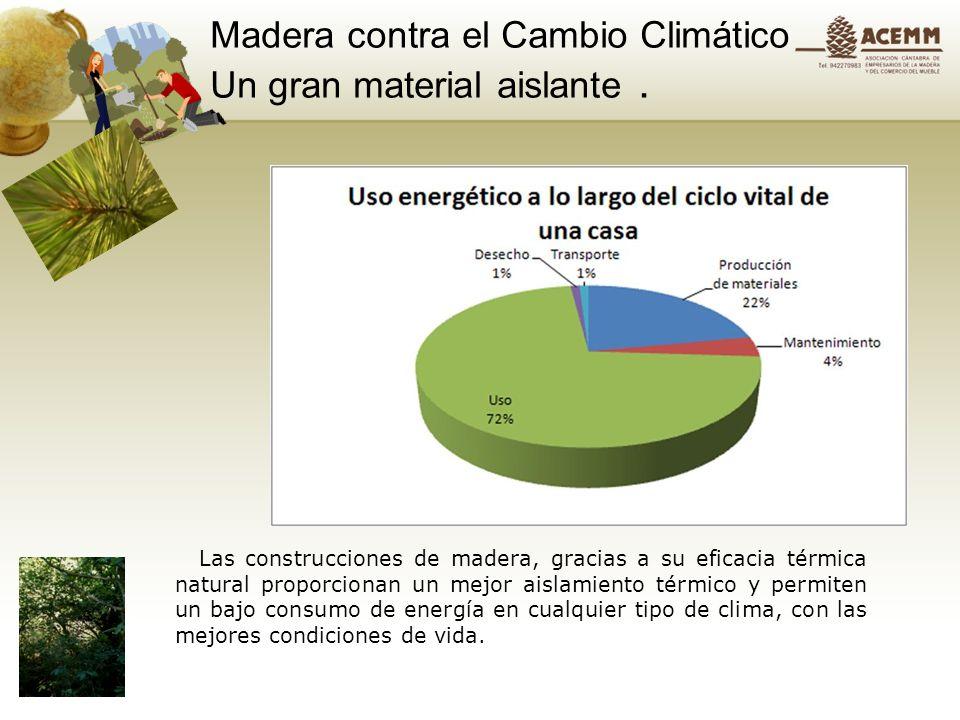 Productos forestales, madera y mueble un bien al alza. Almacenamiento de carbono en el hogar