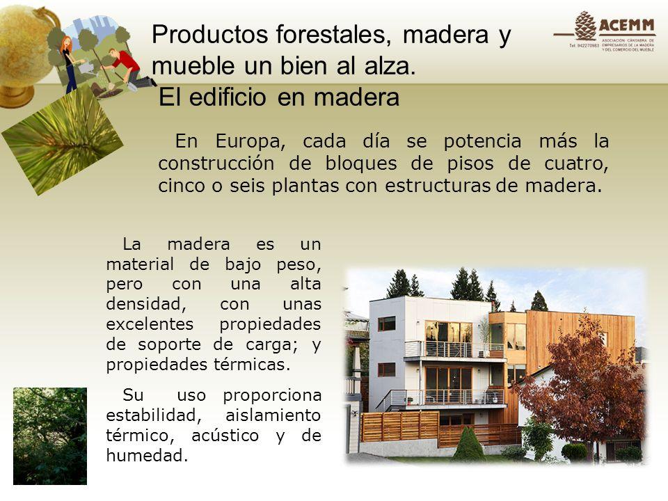 Productos forestales, madera y mueble un bien al alza Gracias a los tratamientos que se aplican a la madera, éste tiene un mejor comportamiento frente al fuego.