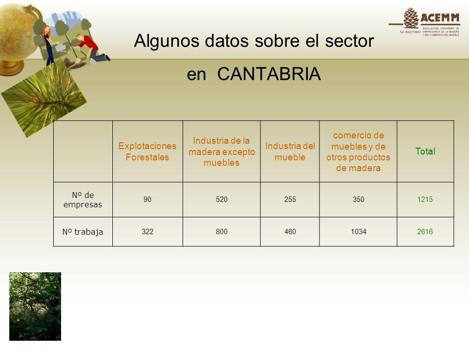 Algunos datos sobre el sector en CANTABRIA Explotaciones Forestales Industria de la madera excepto muebles Industria del mueble comercio de muebles y