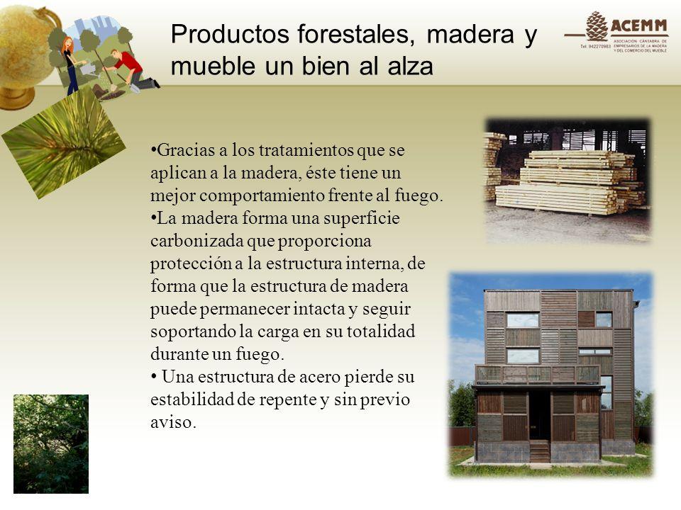 Productos forestales, madera y mueble un bien al alza Construir con Madera Seis guías técnicas Guía de productos de madera para la construcción Conceptos básicos de la construcción con madera Guía para la ejecución, control y mantenimiento.