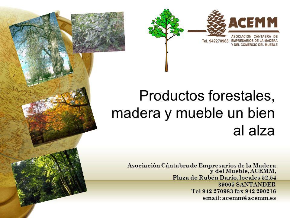 Productos forestales, madera y mueble un bien al alza Asociación Cántabra de Empresarios de la Madera y del Mueble, ACEMM, Plaza de Rubén Darío, local