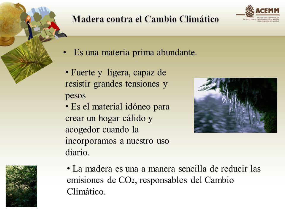 Almacena carbono Ahorra energía y CO 2 porque reemplaza materiales intensivos en carbono Por su gran capacidad aislante, permite reducir las emisiones de CO2 en las viviendas construidas con madera.