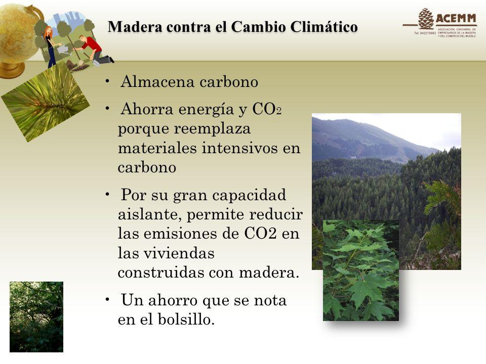 La madera, materia prima renovable y versátil Se usa en: Construcción Mobiliario Para cocinar En embalajes Al final de su primera vida útil, puede ser reutilizada, reciclada o ser fuente de energía neutra en carbono.