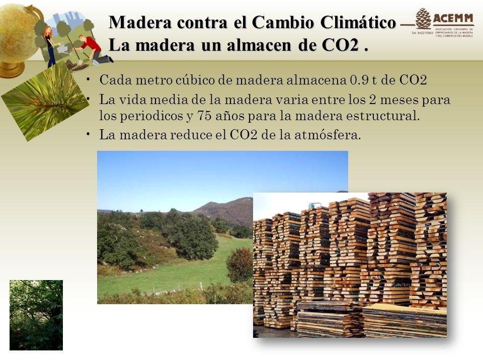 Madera contra el Cambio Climático Un gran material aislante La madera ayuda a ahorrar energía a lo largo de la vida útil de un edificio.