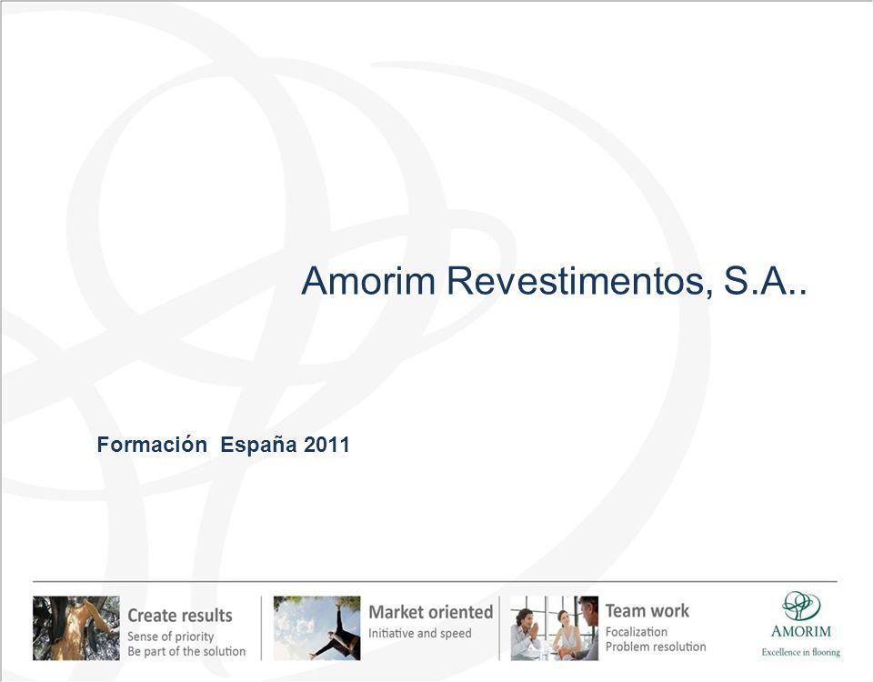 Amorim Revestimentos, S.A.. Formación España 2011