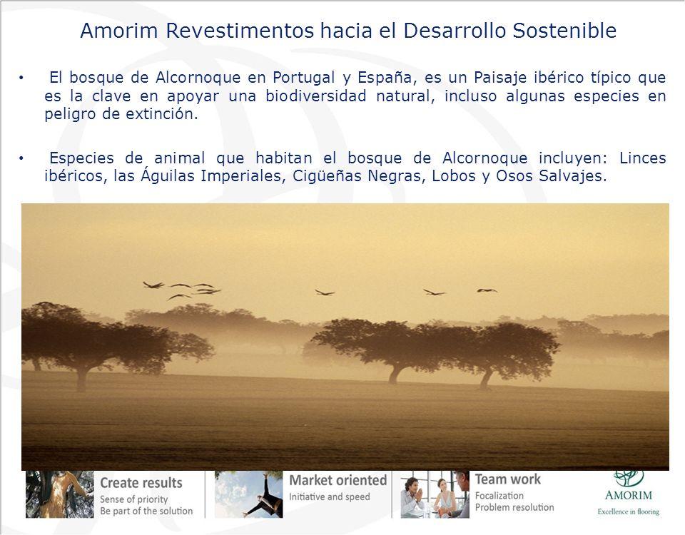Amorim Revestimentos hacia el Desarrollo Sostenible El bosque de Alcornoque en Portugal y España, es un Paisaje ibérico típico que es la clave en apoy