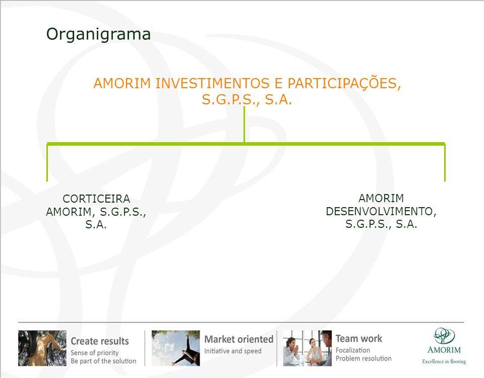 2010 Cifras Principales– Amorim Revestimentos, S.A.