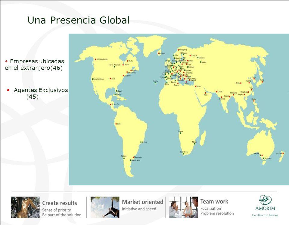 Agentes Exclusivos (45) Una Presencia Global Empresas ubicadas en el extranjero(46)