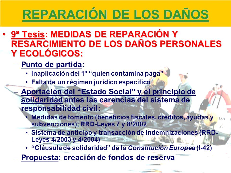REPARACIÓN DE LOS DAÑOS 9ª TesisMEDIDAS DE REPARACIÓN Y RESARCIMIENTO DE LOS DAÑOS PERSONALES Y ECOLÓGICOS:9ª Tesis: MEDIDAS DE REPARACIÓN Y RESARCIMI